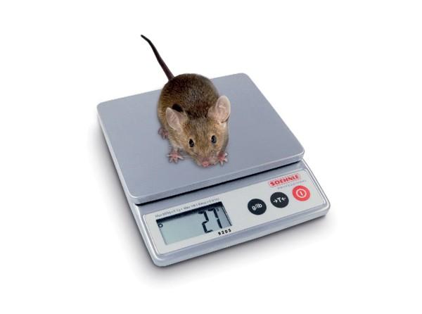 Mäusewaage